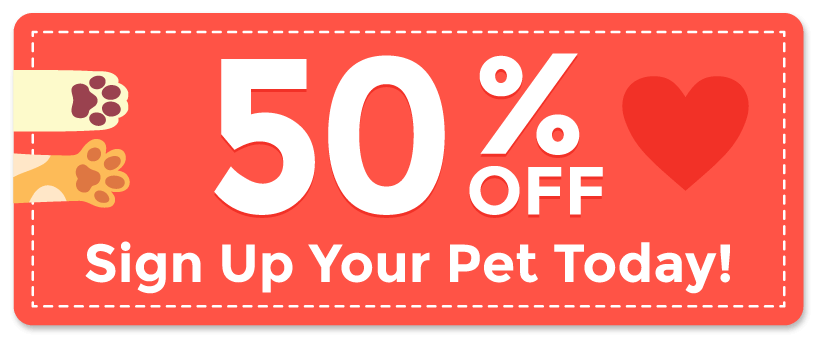 50% OFF Sign up your pet today!