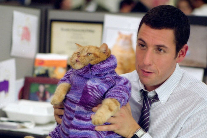 Adam Sandler, Anger Management