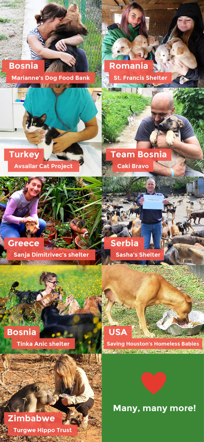 collage of rescue organization and animals you are saving!