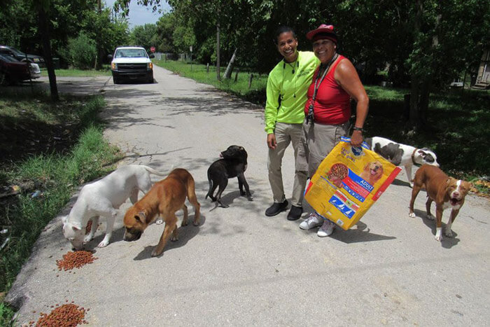 USA Animal rescuer