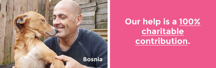 Your help is a 100% charitable contribution. Bosnia